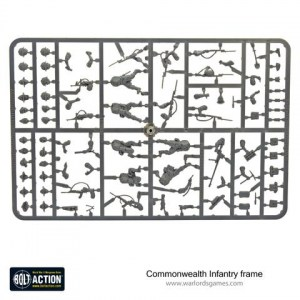 4030550001-Commonwealth-Infantry